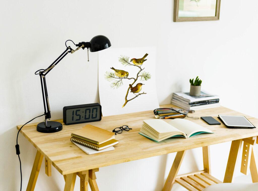 sillas y mesas de estudio